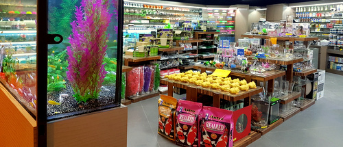 AMB Aquatic HUB pet shop Singapore.