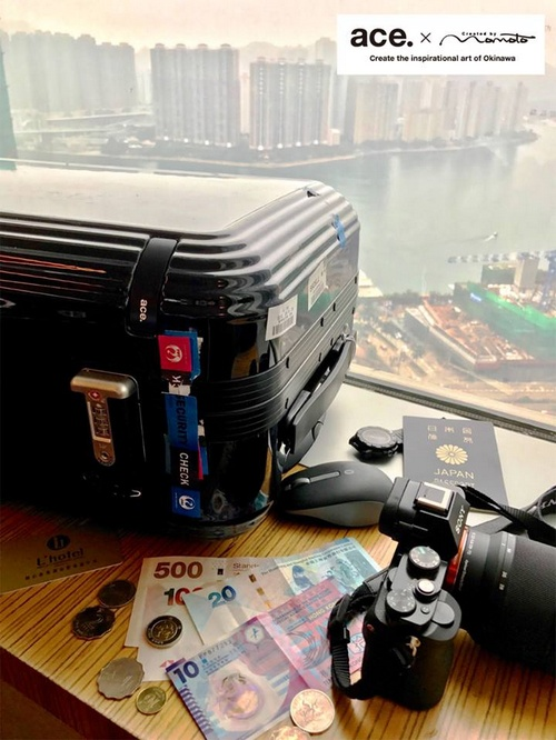 ace. travel luggage Singapore.