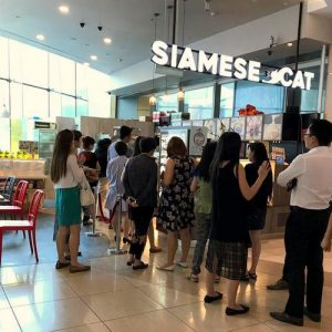 Siamese Cat Cafe in Singapore.