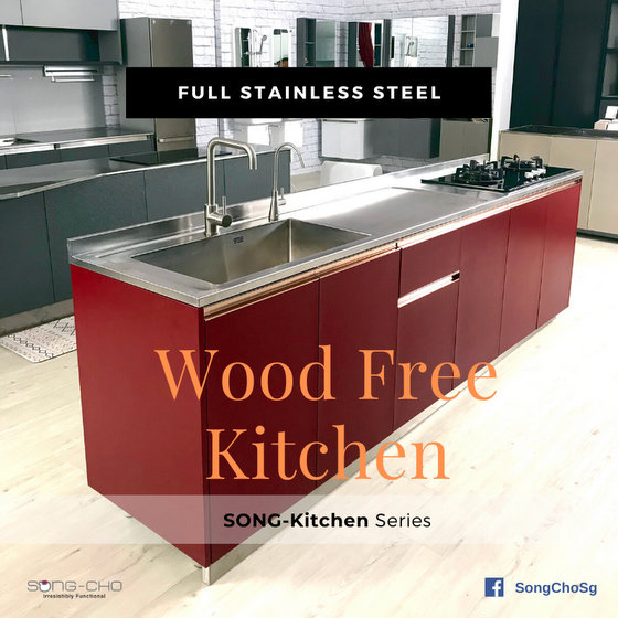 Stainless Steel Kitchen - Wood Free Kitchen Singapore.