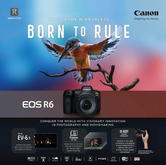 Canon EOS R6 camera - Bally Photo Electronics.