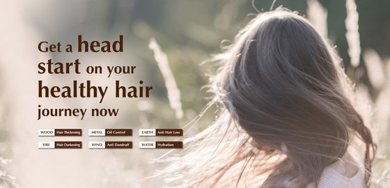Scalp Treatments in Singapore - 6 Elements Hair Spa.
