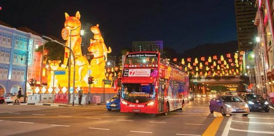 BIG BUS & DUCK - Hop On Hop Off Bus Tour in Singapore.