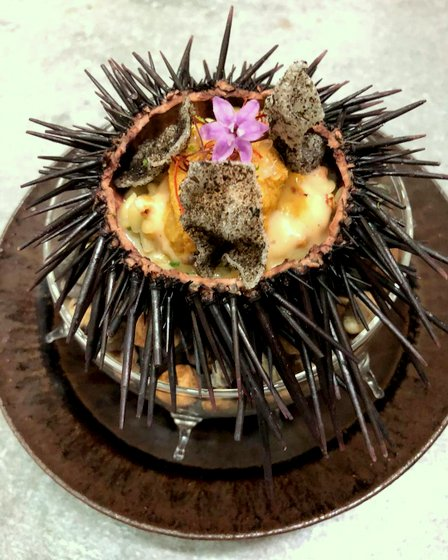 Sea Urchin (with riso, seaweed, cider, crustacean, and finger lime).